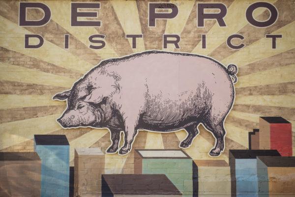a large illustration of a hog
