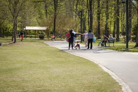 people strolling in whitaker park