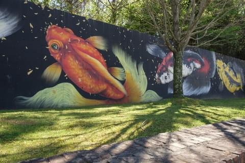 Bright colorful fish mural