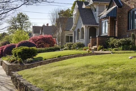 lush green bungalows in Virginia Highland