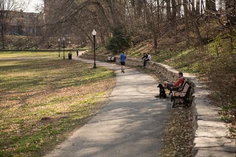 park-benches.jpg