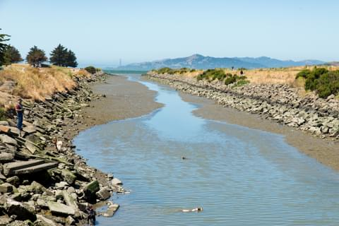 Take advantage of the great outdoors by enjoying nearby water in Albany and El Cerrito.