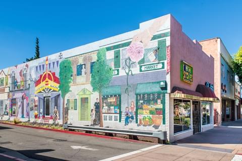 Hayward Street Murals,