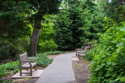 Piedmont gives you lots of access to nature, with parks and walking trails throughout the area.
