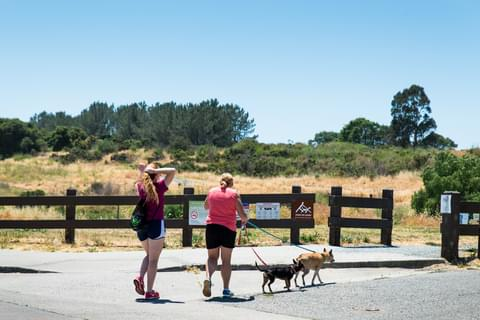 East Bay Regional Parks District,