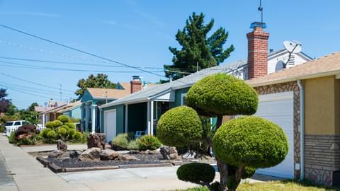 Hayward, East Bay, CA