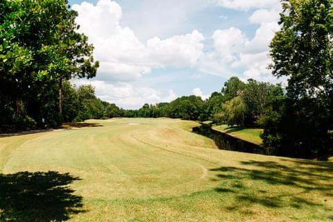 Golfer's Delight,