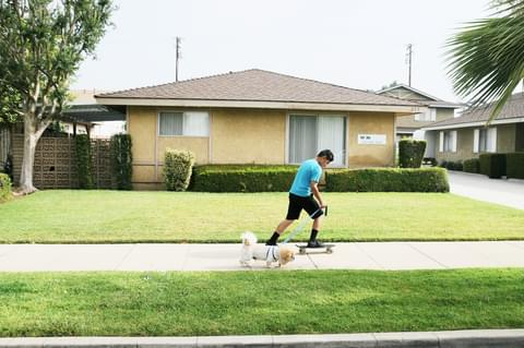 Covina is a largely residential community, so kids and pets are a common sight.