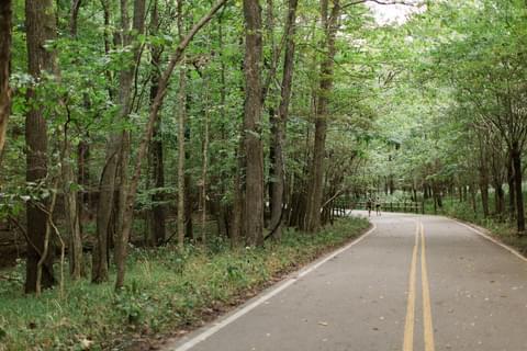 Trails Galore,
