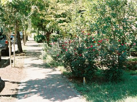 Colorful Sidewalks,