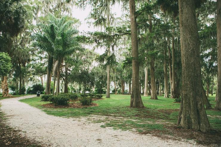 Near Lake Baldwin, Orlando, FL