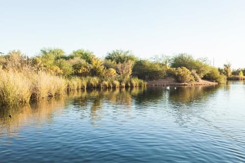 riparian-preserve-at-water-ranch.jpg