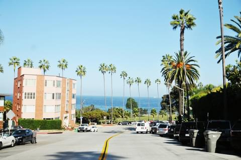 To spot some sea life, or just to enjoy the day, take one of La Jolla's sloping streets down to the Shores or Cove.